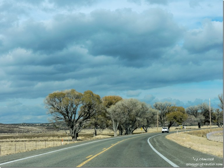 Clouds & Cottomwoods SR89 North Peeples Valley Arizona