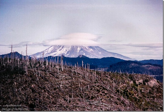 Mt St Helens from Norway Pass trail Mt St Helens National Volcanic Monument Washington 1990s