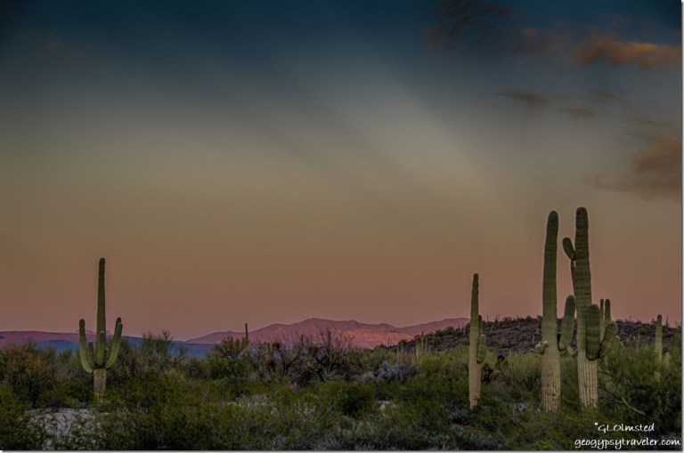 Sunset anticrepuscular rays Pozo Redondo Mountains saguaros Darby Wells Road BLM Ajo Arizona