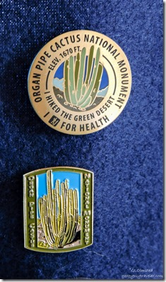 Healthy hiker & Organ Pipe Cactus National Monument pins