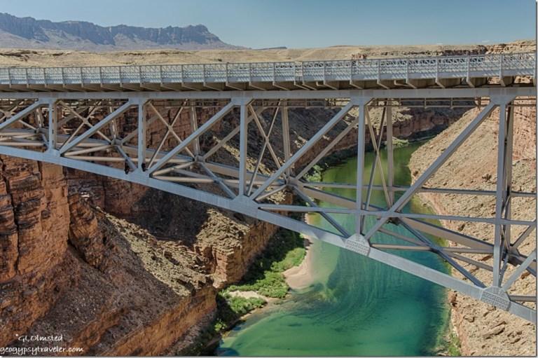 California condors Navajo bridge Colorado River Glen Canyon National Recreation Area Marble Canyon Arizona