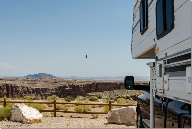 truckcamper turkey vulture Little Colorado River Gorge interp site Navajo Rezervation SR64 Arizona