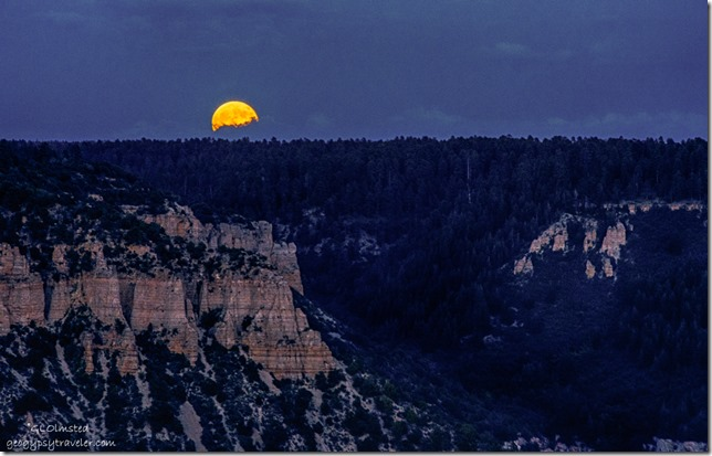 Full moon rise over Rainbow Rim from Crazy Jug Point Kaibab National Forest Arizona