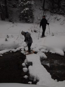 Creek Crossing via Snowshoes