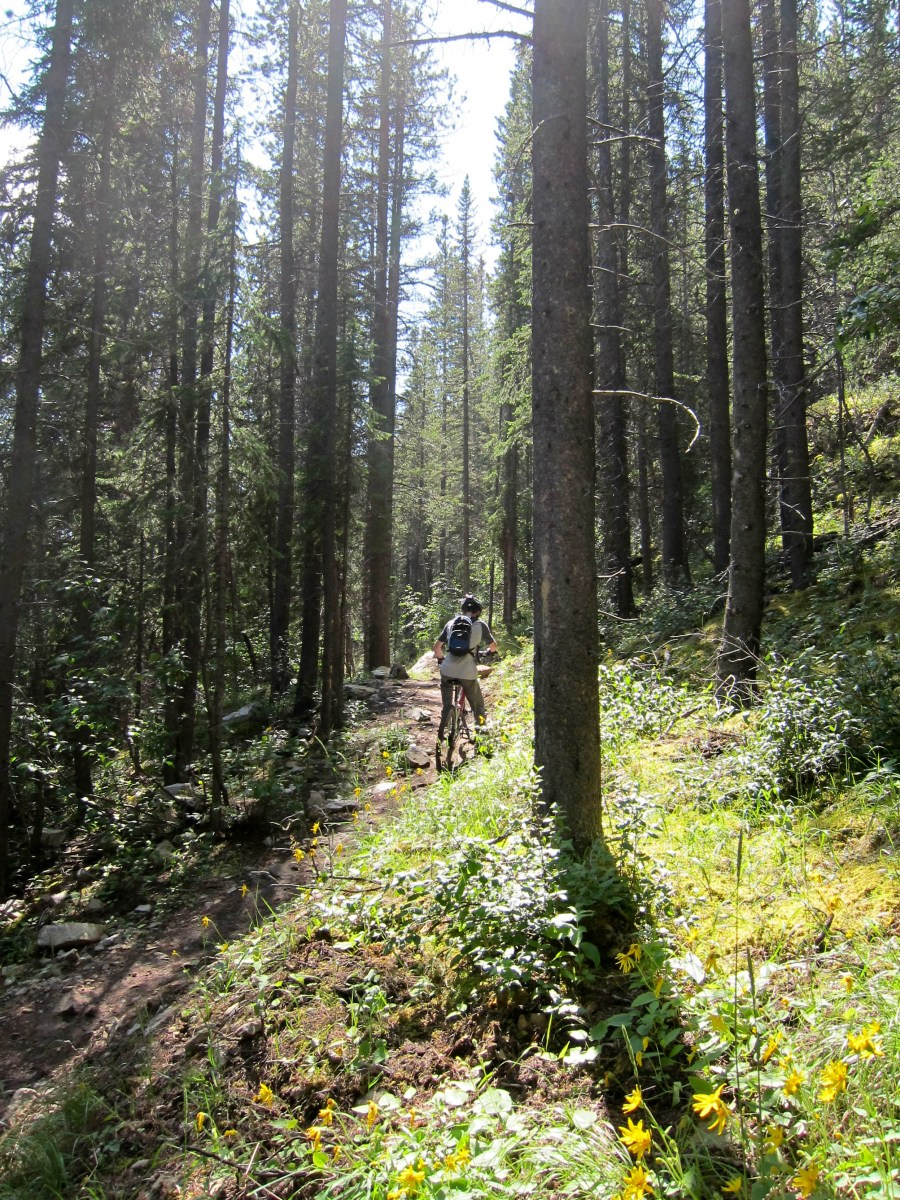 Oldest GeoKid rides a gentle uphill section of Highline Trail