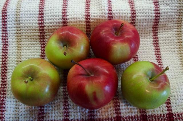 Last few apples