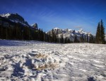 """Another view of Mount Rundle, with elk """"beds"""" in the foreground"""