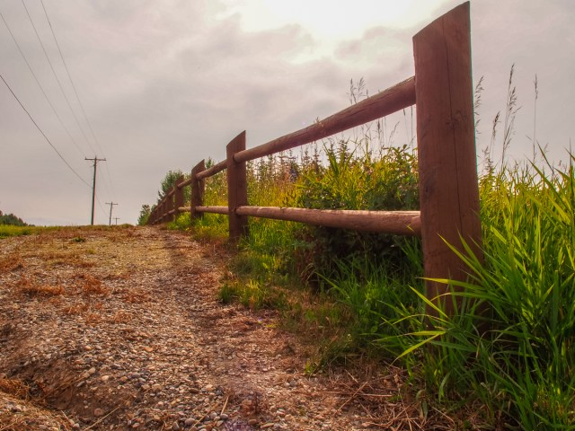 Fence line along Springbank Road near Pinnacle Ridge