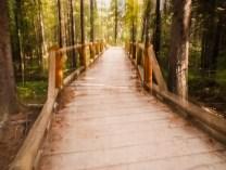 Bridge along the Riverside Trail