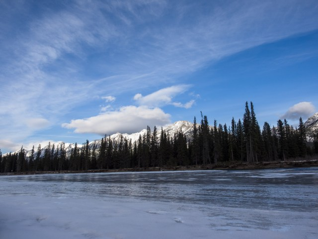 Looking across the Bow River, Mount Lady MacDonald defines t.he opposite side of the valley. There's still a wide channel of open water, with a narrower shelf of ice along the south bank.