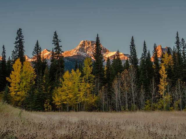 Mount-Lougheed