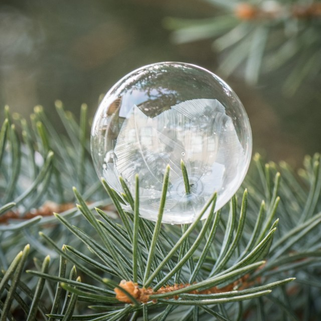 frozen-soap-bubble
