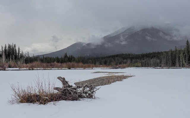 grey-day-in-the-Bow-Valley