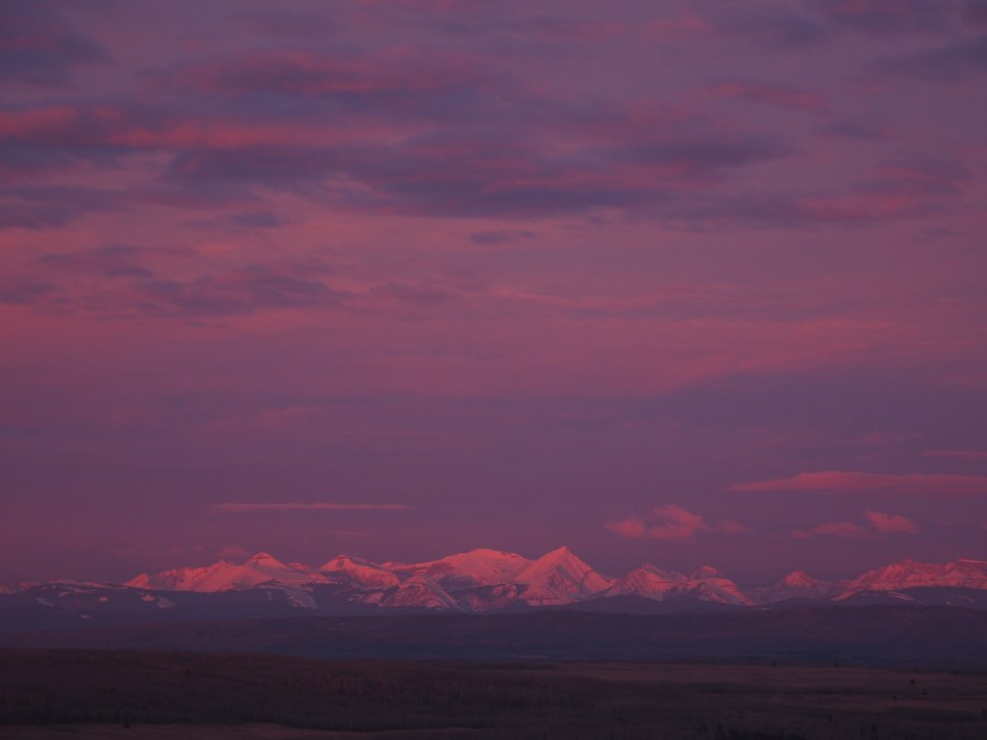 Venus-girdle-effect-turns-early-morning-western-sky-pink-and-purple