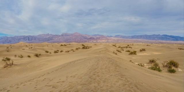 footsteps-mesquite-flat-sand-dunes