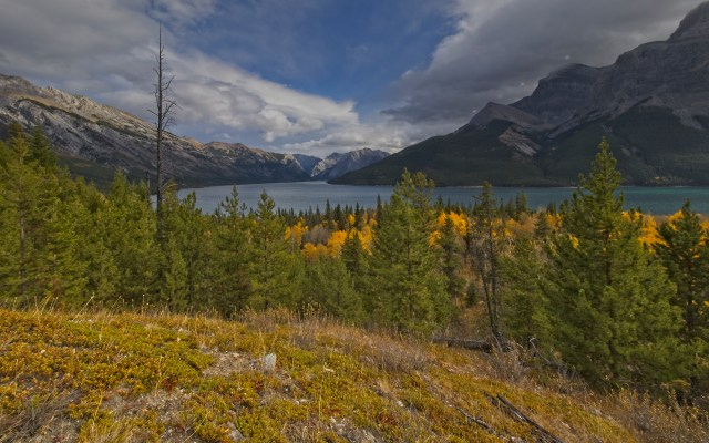 looking west along Lake Minnewanka