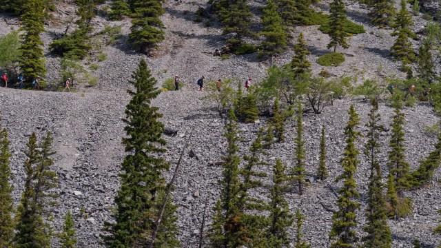 hikers on Lake Minnewanka trail