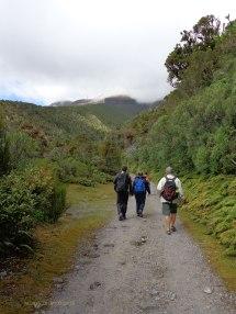 Heading up the mountain. Martin Drury © 2013
