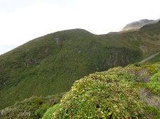 The flanks of the mountain. Martin Drury © 2013