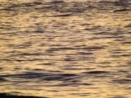 Korora Sunrise Two - 03