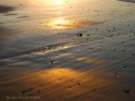 Korora Sunrise Two - 38