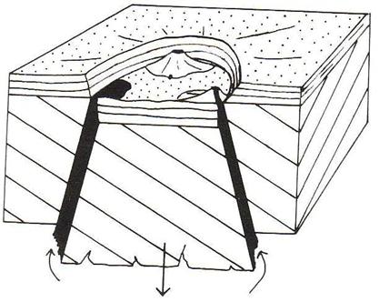 image 71