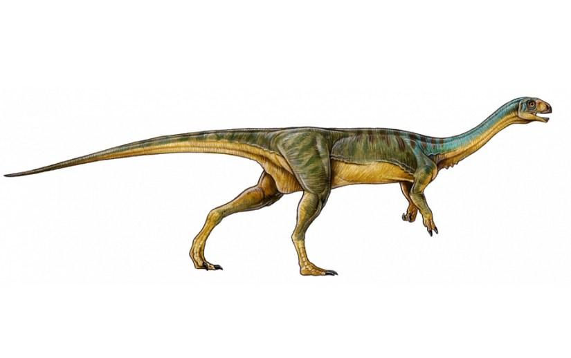 """Representación del """"Chilesaurus diegosuarezi"""", abreviado por los medios como el """"Chilesaurio"""", el cual vivió hace más de 145 millones de años"""
