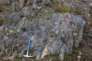 Slate of the Galice Formation, OR
