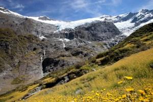 Rob Roy Glacier, NZ