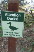 Instead of warning people to not feed the animals...