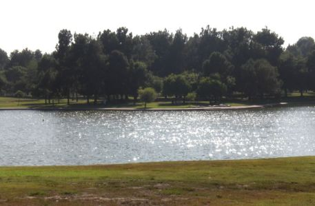 Lake in the East Park area.