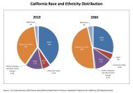 Graphs showing current and projected racial population for California. Image from Google Images.