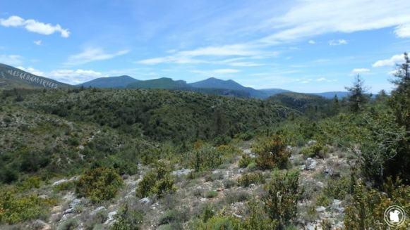 Le plateau du haut Moustiers