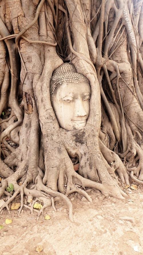 Wat Phra Mahatat, Thaïlande