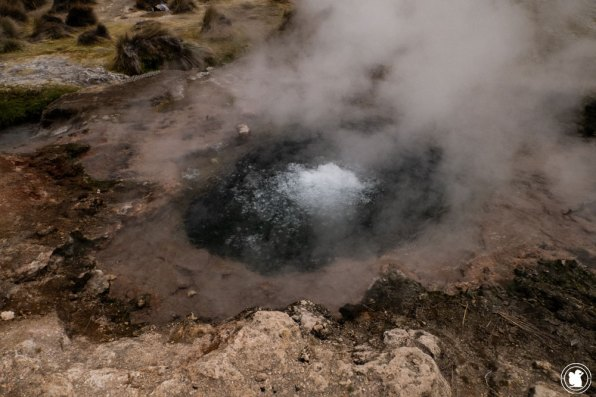 Les geysers du parc national Sajama en Bolivie