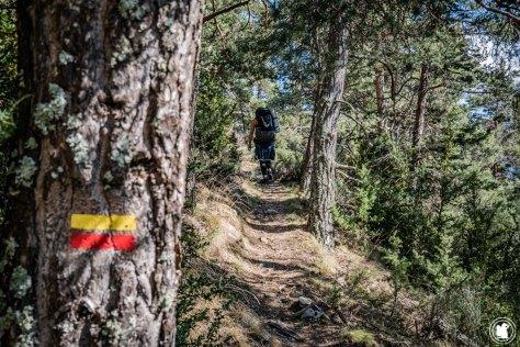 Trek Val d'Allos GRP Anais