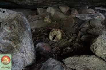 lajedo do marinho - cemiterio indigena