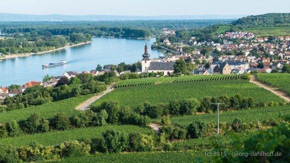 Nierstein am Rhein - Bild Nr. 201508052754