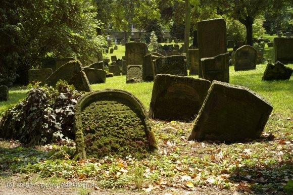 """Worms: Jüdischer Friedhof """"Heiliger Sand"""" - Bild Nr. 200706020058"""
