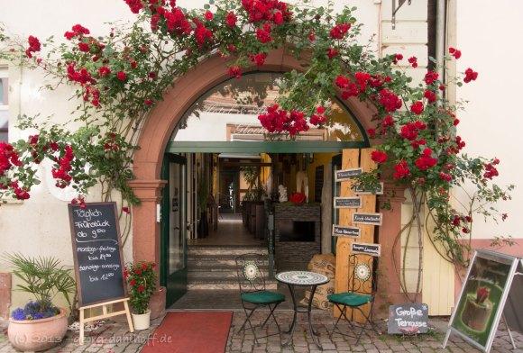 Altstadt Café Glockenhof - Bild Nr. 201306301456