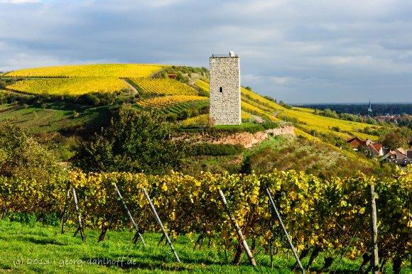 Der Schlossturm in Nierstein-Schwabsburg - Bild Nr. 201310301566