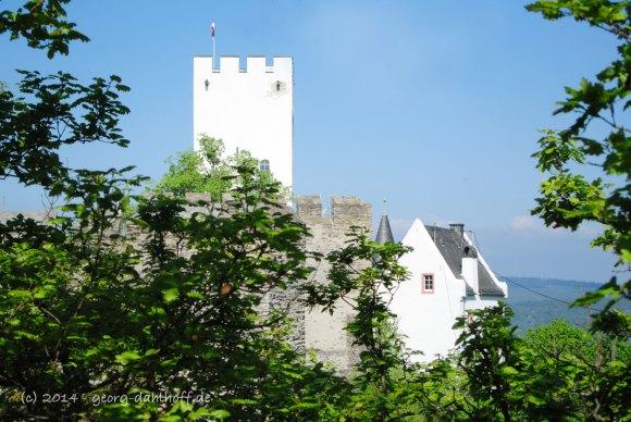 Burg Sterrenberg - Bild Nr. 201404132833
