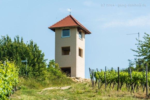Wingertsturm oberhalb Stadecken-Elsheim - Bild Nr. 201406083054