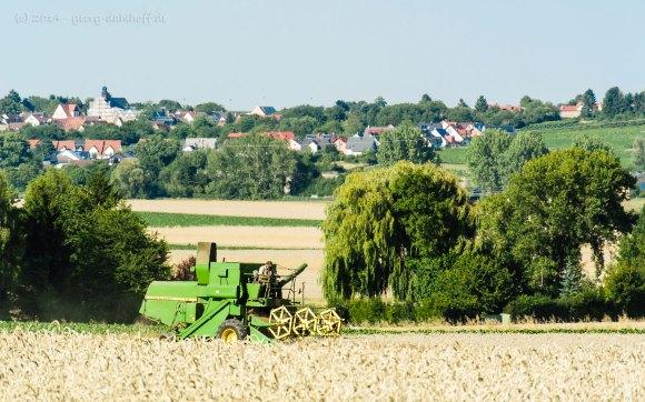 Mähdrescher vor Lörzweiler - Bild Nr. 201407173226