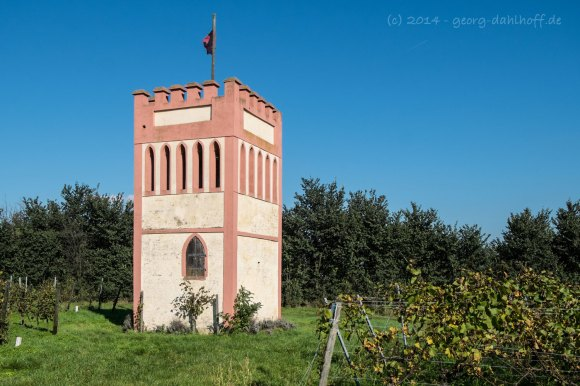 Weinbergsturm Weingut Blümel - Bild Nr. 201410191544
