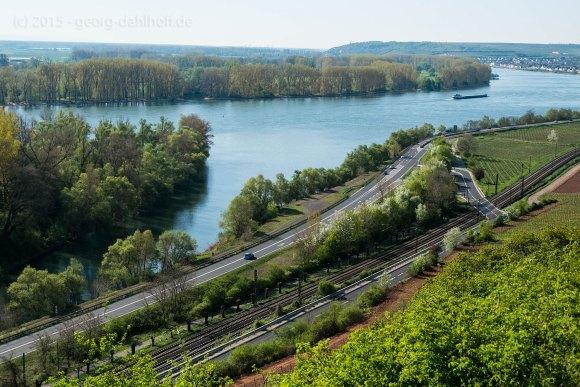 Ausblick auf den Rhein - Bild Nr. 201504192230