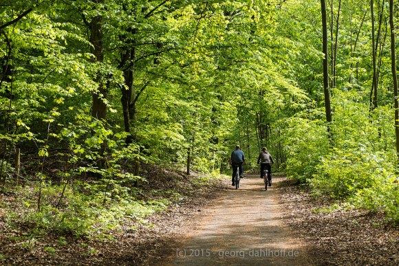 Unterwegs im Lennebergwald - Bild Nr. 201504262346