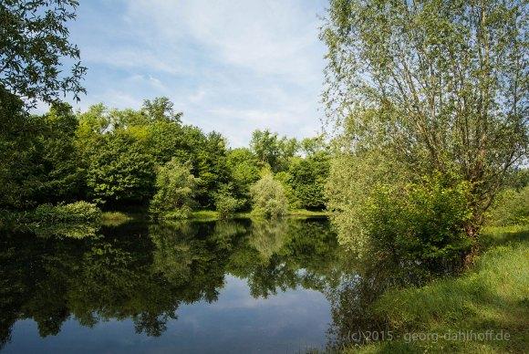 Teich des Angelsportvereins Oppenheim - Bild Nr. 201505144573