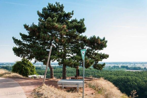 Aussichtspunkt am Nackenheimer Wegkreuz - Bild Nr. 201508230820