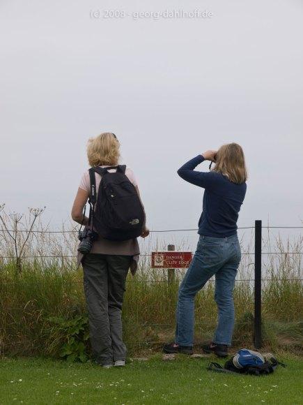 Wo ist Bass Rock? - Bild Nr. 200807262615